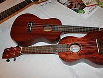 einfach ukulele lernen
